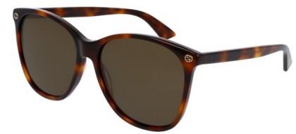 Gucci GG0024S-002 Havana Havana - Shiny Brown