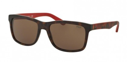 Polo Ralph Lauren 0PH4098 560173 Matte Dark Gunmetal - Dark Brown
