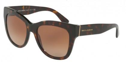 Dolce & Gabbana 0DG4270 50213 Havana - Brown Gradient