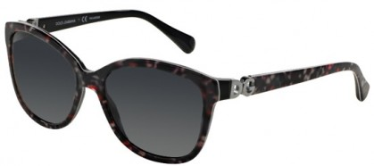 Dolce & Gabbana DG4258 2778T3 Black Flowers - Grey Shaded Polarized