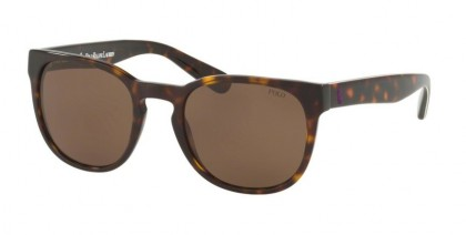 Polo Ralph Lauren 0PH4099 564873 Shiny Dark Havana - Dark Brown