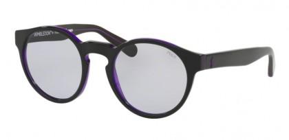 Polo Ralph Lauren 0PH4101 56991A Black Top Transparent Purple - Lilac