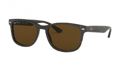 Ray Ban 0RB2184 902/57  Havana - Polarized Brown